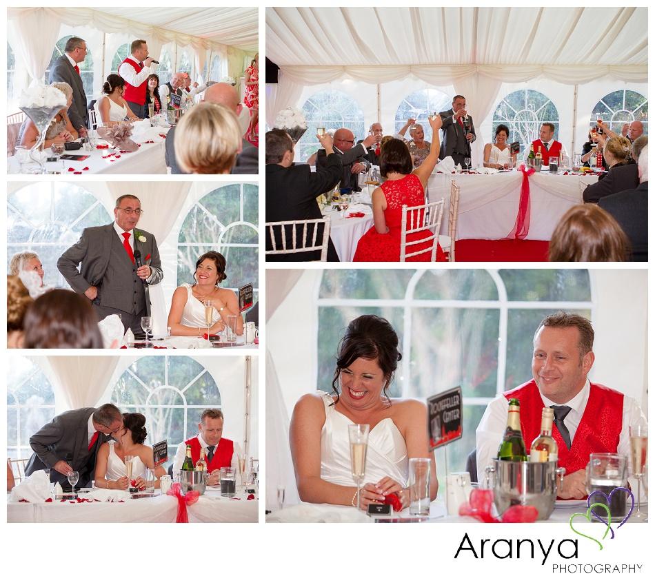 Wedding speeches at Bleak House wedding