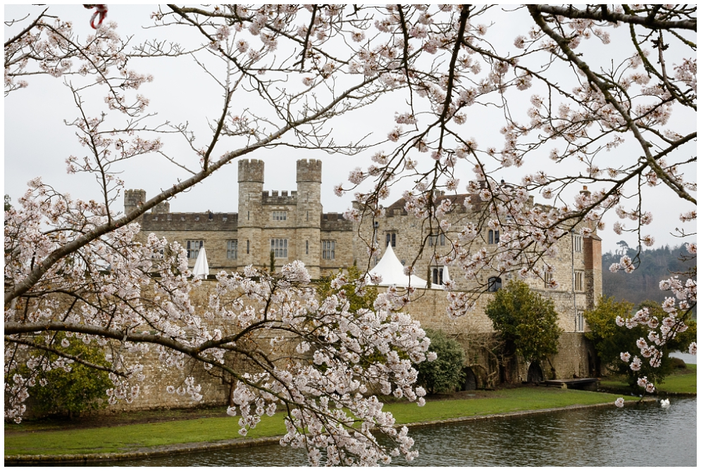 Leeds Castle blossom trees and the moat